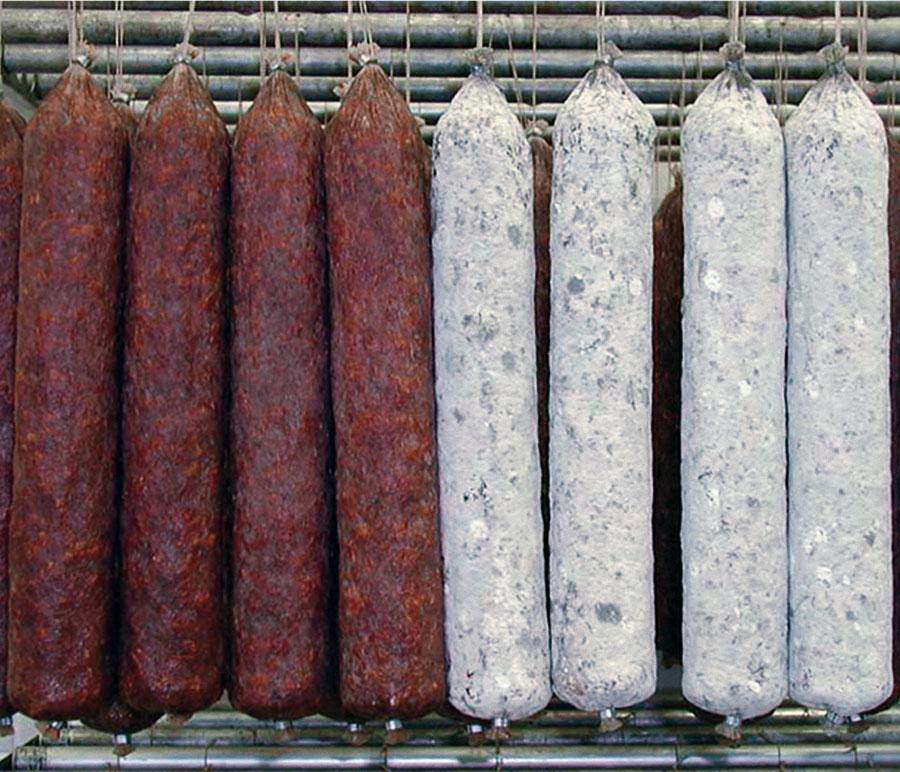 Lavage-soufflage saucissons Colussi Ermes